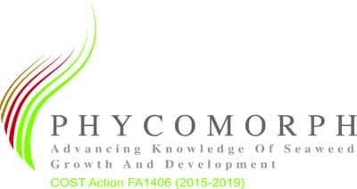 phycomorph