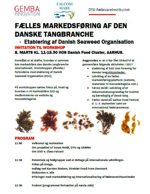 DSO workshop1 invitation 080317